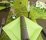 Bapteme-bebe-theme-decoration-fille-vert-chocolat