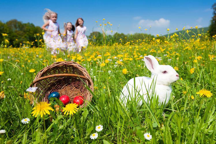 paques-oeufs-lapin-enfants
